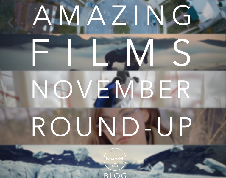 #AmazingFilm November Round-up