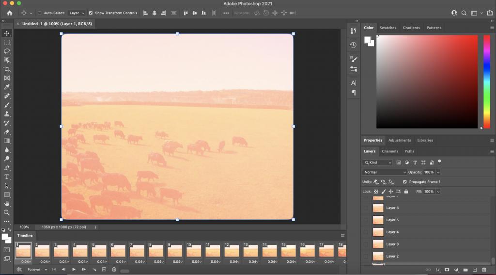 photoshop imported video frames timeline screenshot